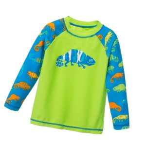 HATLEY Boys Green & Blue 'Chameleon' Top